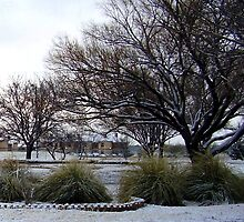 Winter Pond From A Distance by R&PChristianDesign &Photography
