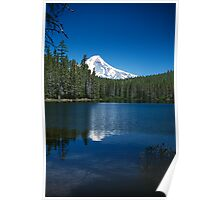 Mt Hood from Frog Lake Poster