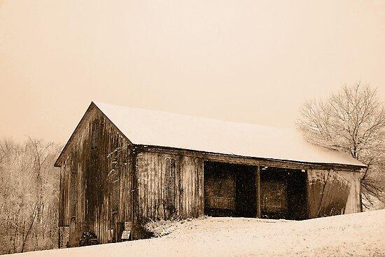 Albert's Barn in Snowstorm by Michael  Dreese