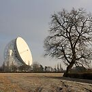 Jodrell Bank Observatory by Mike Paget