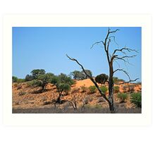 Northern Cape - South Africa Art Print