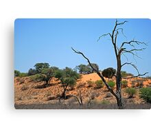 Northern Cape - South Africa Canvas Print