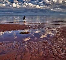 A Walk On the Beach by Kathy Weaver