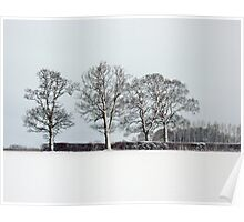 Across a snowy field in Bintree Norfolk Poster