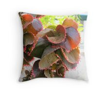 Colored group Throw Pillow