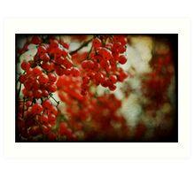 Red Berry Bokeh Art Print