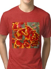 Cathedral Tulips Tri-blend T-Shirt