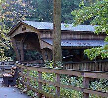 Mill Bridge by Monnie Ryan