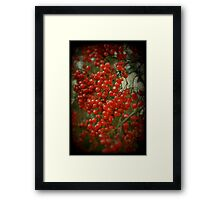Red Berry Bokeh Framed Print