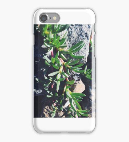 Creeping Summer Plant iPhone Case/Skin