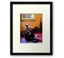 Teddy Bear and Rocking Horse Framed Print