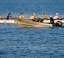 Rowing Hard - Tampa, Florida by rjhphoto