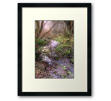 Mossy Brook Framed Print
