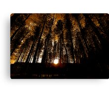 Sunburst Finish Canvas Print