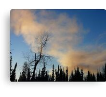 Smoke from our stove Canvas Print