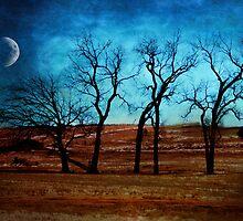 Midnight In Winter's Garden by Tia Allor-Bailey