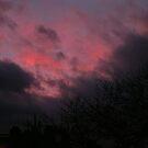 Mid Winter's Sky by Josephine Sayers