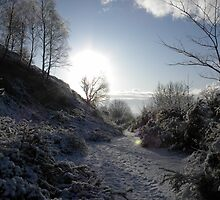winter wonderland by rhian mountjoy