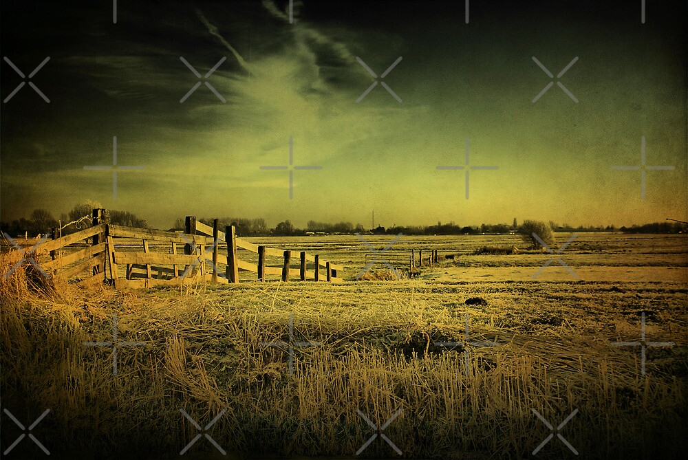 Dutch Polder Landscape by AnnieSnel