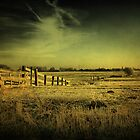 Dutch Polder Landscape by AnnieSnel