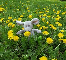 Homemade soft toy on the lawn by vladromensky