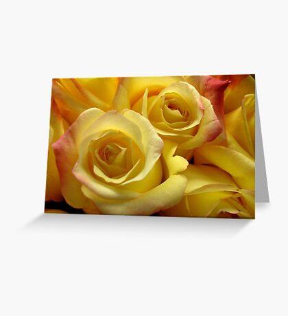 Blushing yellow roses Greeting Card