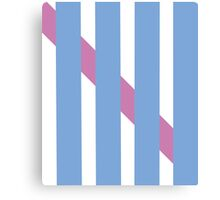 Woven Blue + Pink Canvas Print