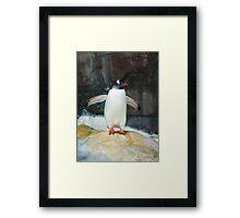 The Penguin Framed Print
