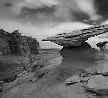 Terra-dactyl by Anne McKinnell