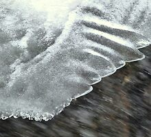 Angel Feathers by HELUA