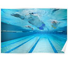 Underwater swimmers  Poster