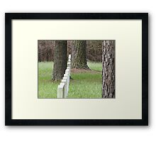 Soldiers Marching Forever Framed Print