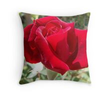 Red rose of summer Throw Pillow