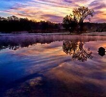 Frosty Sunrise by Kathy Weaver
