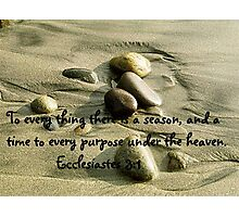 A Time To Every Purpose Photographic Print