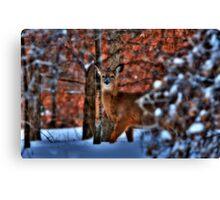 Deer Park Canvas Print