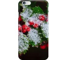 Snow On the Holly iPhone Case/Skin