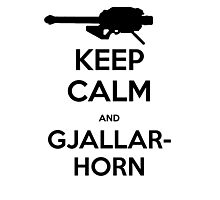 Destiny Keep Calm and Gjallarhorn Photographic Print