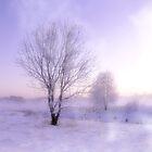 Deer Creek Frost at Sunrise by Hope Ledebur