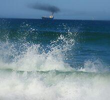 Ship Ahoy by Paula Bone
