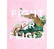 Fight or Flight Photographic Print