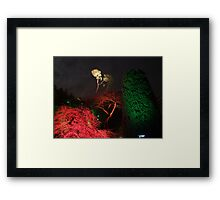 Night in the Sunken Garden(6) Framed Print