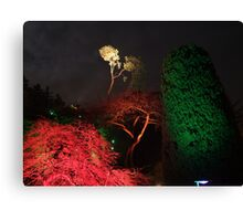 Night in the Sunken Garden(6) Canvas Print