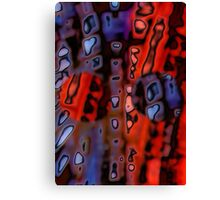 Split PSP Canvas Print