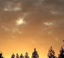 Golden Glow Sky by starlitewonder