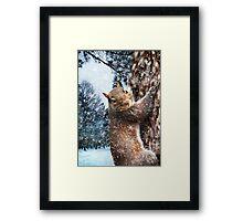 """Let It Snow"" Framed Print"