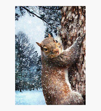 """Let It Snow"" Photographic Print"