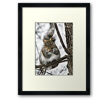 """Hey! Is That A Snowflake On Your Nose?"" Framed Print"