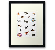 Caturday is Everyday Framed Print