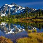 Picture Lake Fall Color by Inge Johnsson
